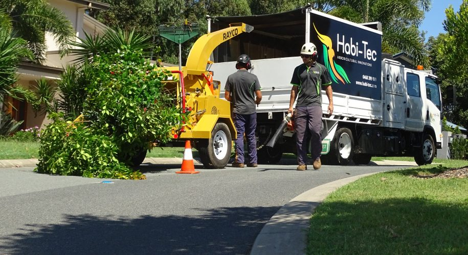 Habi-Tec Qualified Arborist