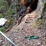 Track Repair Arborist Specialist National Parks